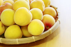 Ripe fruits of Ume Stock Image