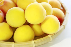 Ripe fruits of Ume Stock Photo