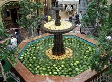 Ripe fruits of watermelon and melon lie in the fountain of the shopping complex royalty free stock images