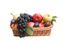 Ripe fruits at the wooden basket. Stock Photography