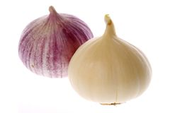 Ripe garlic bulbs Stock Photo