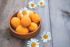 Ripe Golden apricots in wooden bowl on wooden background. Copy space. Royalty Free Stock Photo