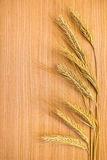 Ripe golden ears of wheat on the wooden background Stock Photos