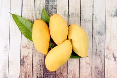 Ripe golden mangos with leaf . Ripe golden mangos with leaf on wood Stock Images