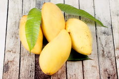 Ripe golden mangos with leaf . Ripe golden mangos with leaf on wood Royalty Free Stock Image