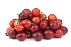 Ripe gooseberries Royalty Free Stock Image
