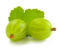Ripe Gooseberries and Leaf Isolated on White Background Stock Photos