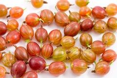 Ripe gooseberry Stock Photo