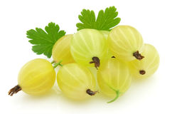 Ripe gooseberry Stock Photo