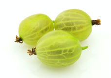 Ripe gooseberry Royalty Free Stock Photo