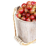Ripe gooseberry in wooden bucket Stock Image