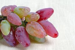 Ripe grape Stock Images