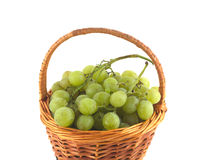 Ripe grape bunches in wicker basket isolated close up Royalty Free Stock Photography