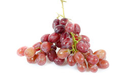 Ripe grape fruits Royalty Free Stock Image