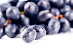 Ripe Grape isolated Stock Photos