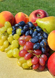 Ripe grape, peaches, pears on the grass Royalty Free Stock Image