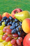 Ripe grape, peaches, pears on the grass Royalty Free Stock Photo