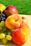 Ripe grape, peaches, pears on the grass Stock Photography