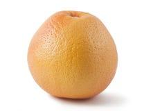 Ripe grapefruit. Ripe orange grapefruit isolated on white background Stock Image