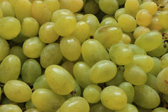 Ripe grapes background Stock Photo
