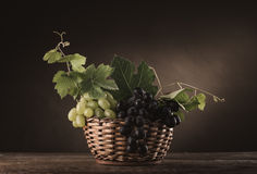 Ripe grapes in a basket still life Royalty Free Stock Photography