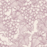 Ripe grapes. Beautiful natural seamless vintage background with hand-drawn bunches of ripe grapes Royalty Free Stock Image