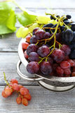 Ripe grapes in colander Royalty Free Stock Photos