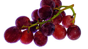 Ripe grapes. Food ingredients, fruit, ripe grapes, full of pulp, still life Royalty Free Stock Photo
