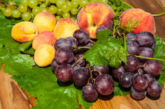Ripe grapes and fruits Stock Image