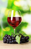 Ripe grapes and  glass of wine Royalty Free Stock Photos