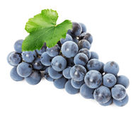 Ripe grapes isolated on the white background.  Royalty Free Stock Photos