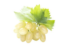 Ripe grapes with leaf Stock Photos