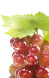 Ripe grapes with leaf Royalty Free Stock Images