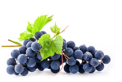 Ripe grapes with leaves Royalty Free Stock Photography