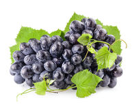 Ripe grapes with leaves Royalty Free Stock Image