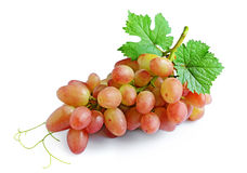 Ripe grapes with leaves stock photos