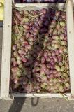 Ripe grapes lie in a wooden box on the counter in the market. Russia. stock photography
