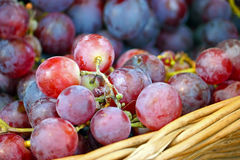 Ripe grapes Royalty Free Stock Image