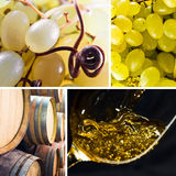 Ripe grapes and white wine Stock Photography