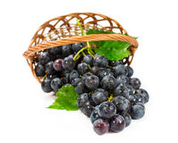 Ripe grapes in a wicker basket stock photos