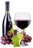 Ripe grapes, wine glass and bottle of wine Royalty Free Stock Image