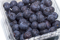 Ripe great bilberry in the box Royalty Free Stock Images