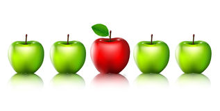 Ripe green apples and one red apple  for you design Stock Images