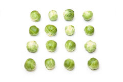 Ripe green Brussels sprouts Stock Photography