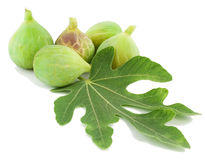 Ripe green  fig fruits  and leaf. Ripe fresh green  fig fruits  and leaf on white background Royalty Free Stock Photography