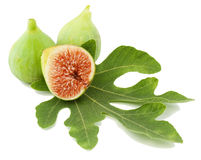 Ripe green  fig fruits  and leaf. Ripe fresh green  fig fruits  and leaf on white background Royalty Free Stock Image