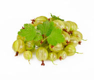 Ripe Green Gooseberry on a White Background Royalty Free Stock Photo