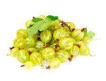 Ripe Green Gooseberry on a White Background Stock Image