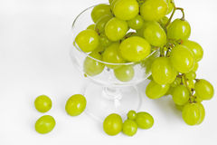 Ripe green grape Royalty Free Stock Photo