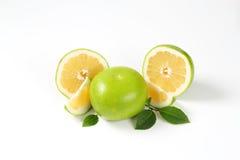 Ripe green grapefruit Stock Images